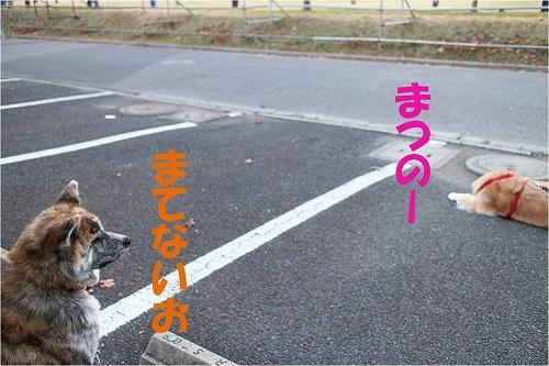 s-140204-5.jpg