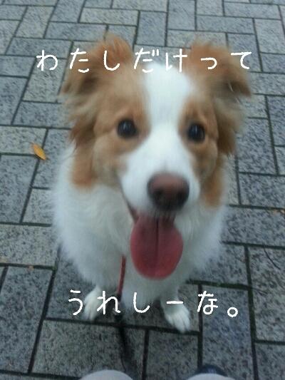 fc2_2013-10-20_23-43-59-615.jpg