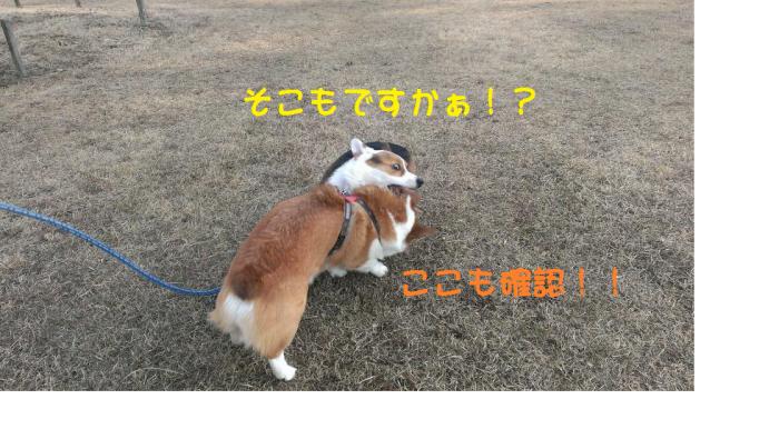 縺薙%繧ら「コ隱浩convert_20140130235631