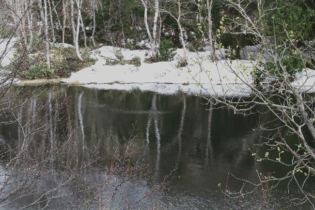 志賀高原-12上の小池-2