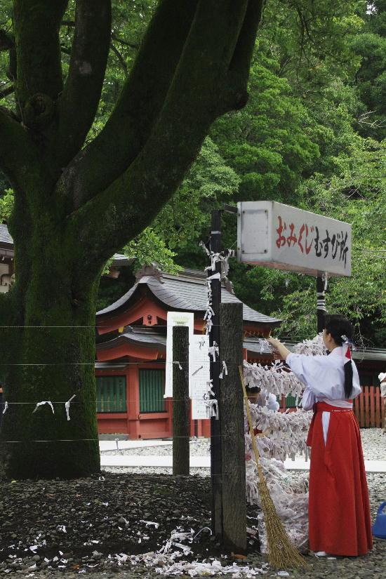 富士宮浅間神社-4-2