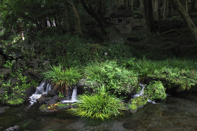 富士宮浅間神社-7