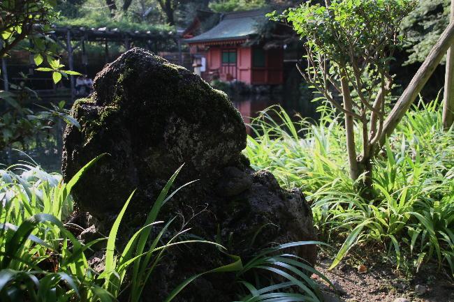 富士宮浅間神社-7-0