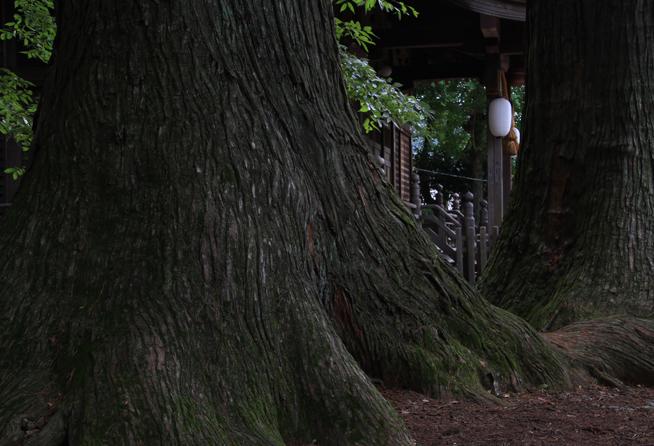日枝神社-096-6