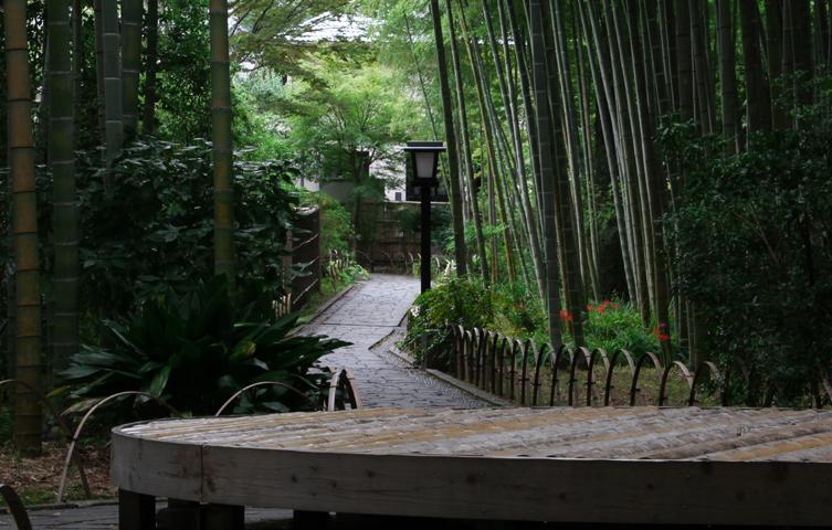竹林の小径-115-12