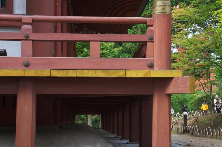 毛越寺-161-2