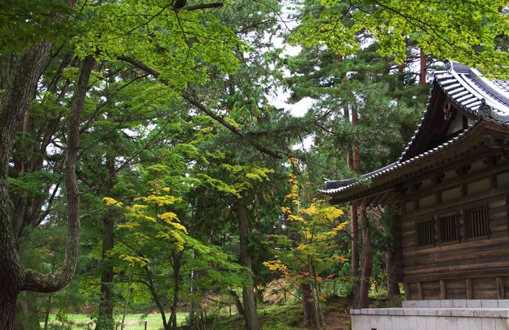 毛越寺216-2
