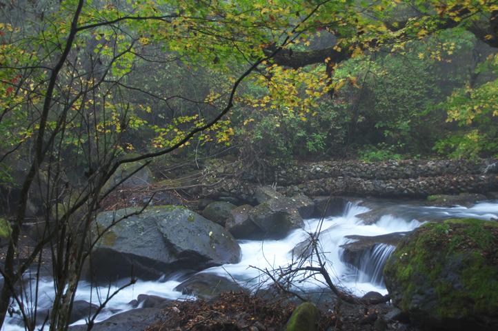 吐龍の滝-434-1