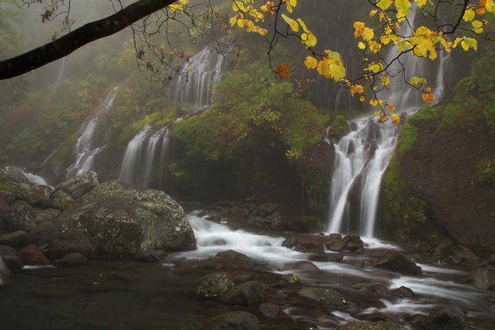 吐龍の滝-468