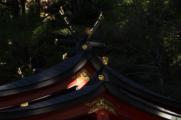 箱根神社-143