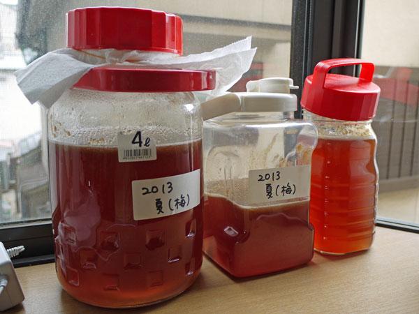 20130704夏酵素2
