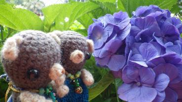 紫陽花とりょくとりっちゃん。