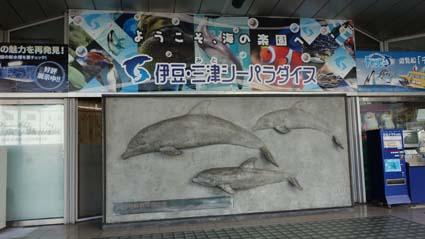 三津水族館5