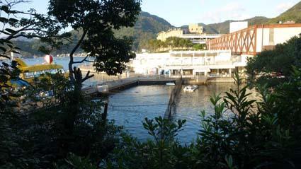 三津水族館12