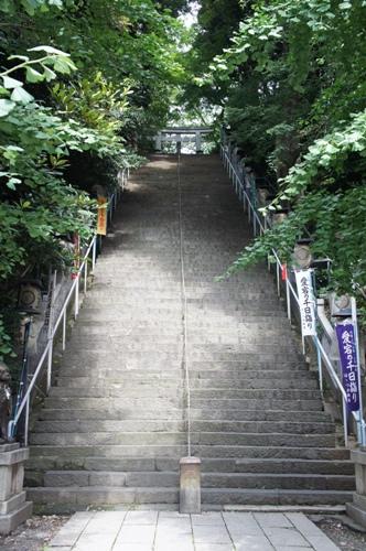 急階段ひょぇ~