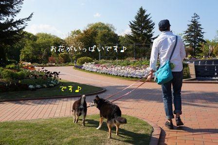 わんぱく公園②