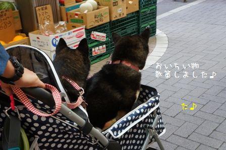 大山ハッピーロード①