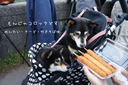 東京ほたる②