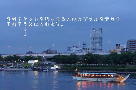 東京ほたる⑧