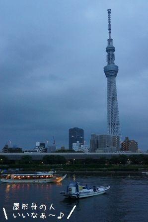 東京ほたる⑨