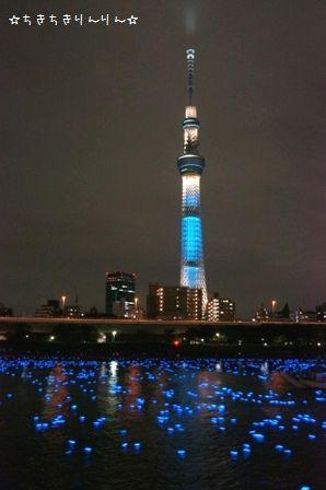 東京ほたる!⑥
