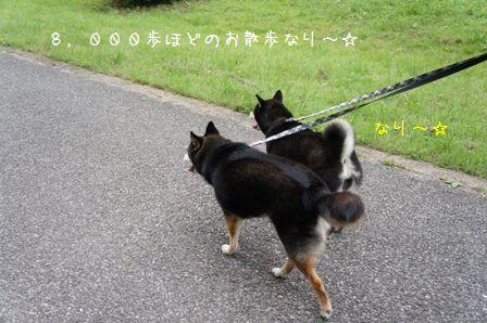 水元公園⑪