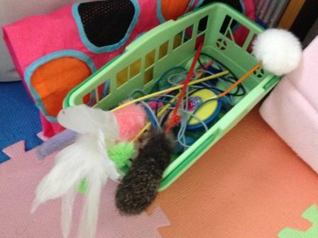 マリーちゃんのおもちゃ箱