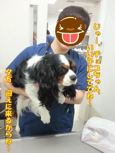 0609病院