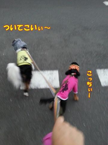 0901さんぽ