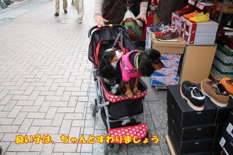 1019川越祭り