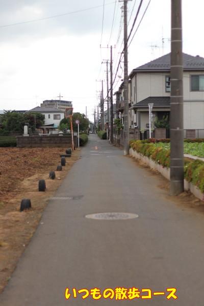 0602お散歩