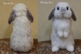 羊毛まるちゃんblog