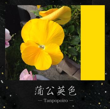 th_写真 2013-04-01 16 04 25