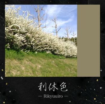 th_写真 2013-04-01 15 33 50