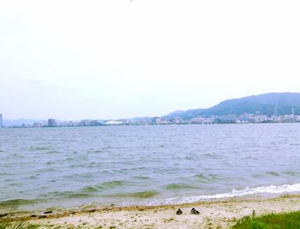 th_写真 2013-05-27 14 21 03