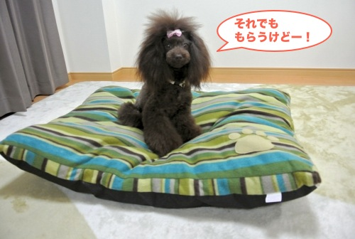 DSC_5050_01.jpg