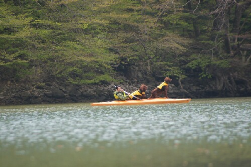 新緑のダム湖 1