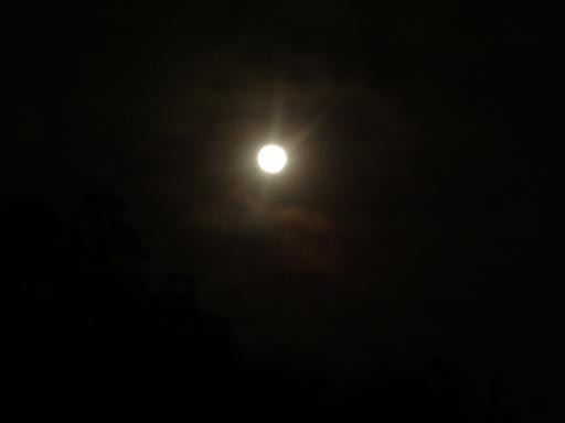 十六夜よいよいお月さま~♪