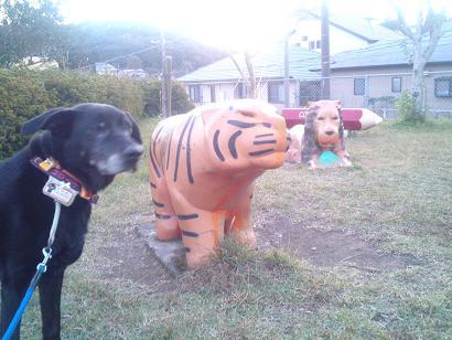 ライオン、タイガー、ロデム?