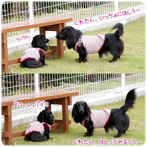 tateyamafamilypark5.jpg