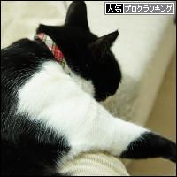 dai20140131_banner.jpg