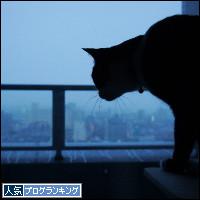 dai20140204_banner.jpg