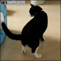 dai20140206_banner.jpg