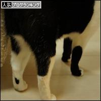 dai20140207_banner.jpg