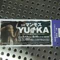 特別展のチケット