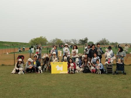 ウエスティ東海チューリップmeeting2013③