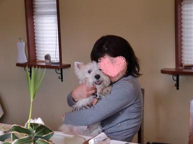 sakuraさんとドルちゃん