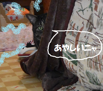 2014103002.png