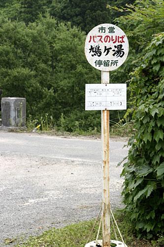 hato_2.jpg