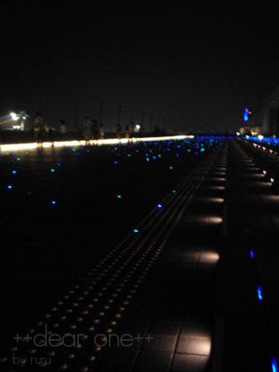 羽田空港130813_20